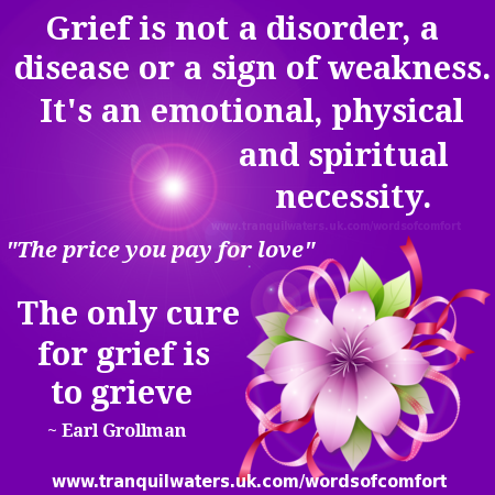 Comforting Quotes About Losing A Loved One Glamorous Words Of Comfort  Bereavement Poems  Bereavement Quotes  Page 3